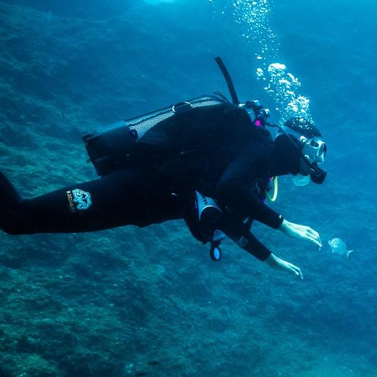 Speciality : Underwater...