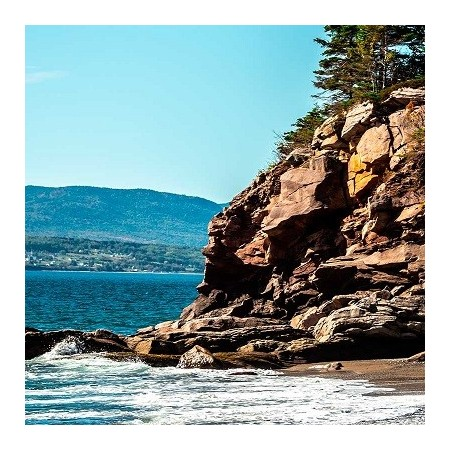 Coast & Shores